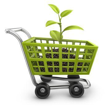 La venta de productos ecológicos, una oportunidad en alza